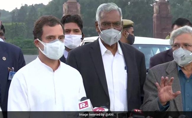 कृषि कानूनों के मुद्दे पर आज फिर राष्ट्रपति से मिलेंगे राहुल गांधी, विजय चौक से राष्ट्रपति भवन तक करेंगे प्रदर्शन