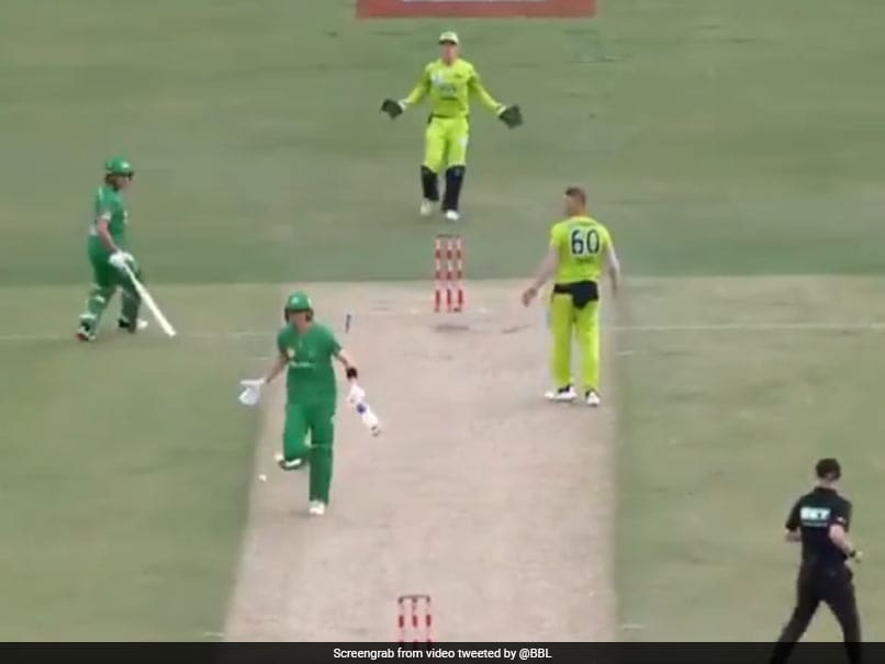 """""""Hide The Ball And Run"""": Melbourne Stars Batsman Nick Larkin Tries To Steal Single With Ball Stuck Inside Jersey In BBL 2020. Watch"""