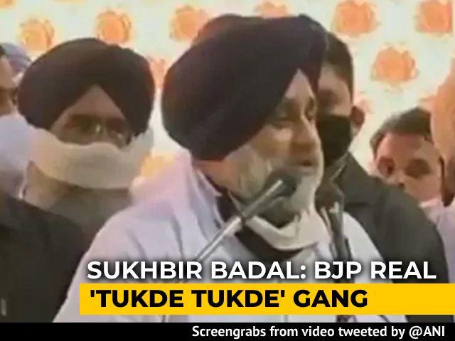 "Video : ""BJP Is Real <i>Tukde Tukde</i> Gang, Trying To Divide Punjab"": Sukhbir Badal"