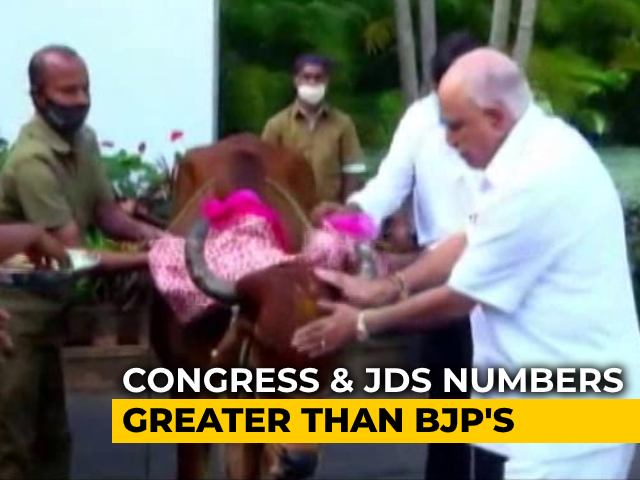 Video : Karnataka Cow Protection Bill Hasn't Crossed Council Hurdle Yet, But Many Worried