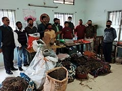 50 Kg Sea Fans, Other Wildlife Parts Seized In Assam, 3 Arrested