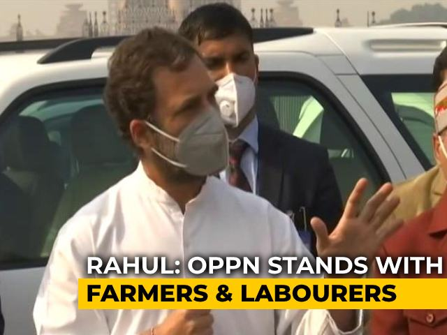 Video : Congress March To President Stopped, Priyanka Gandhi Briefly Detained