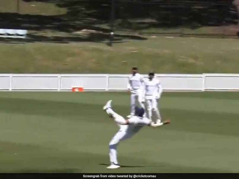 "Watch: Prithvi Shaws ""Unbelievable Grab"" To Dismiss Tim Paine In Practice Match"