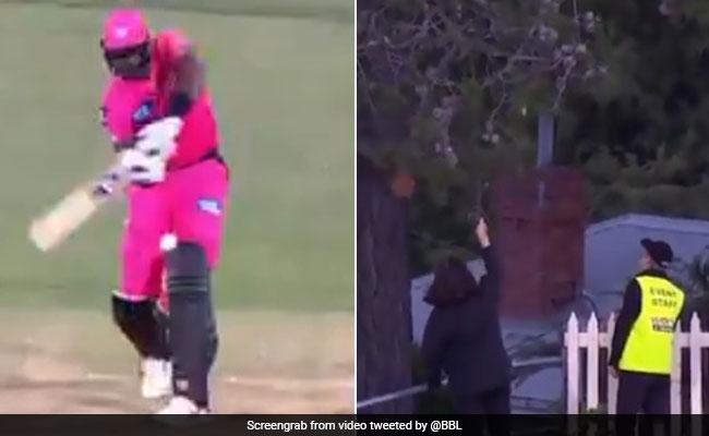BBL 2020: जेसन होल्डर ने मारा ऐसा छक्का, गेंद जाकर पेड़ पर अटक गई..देखें Video