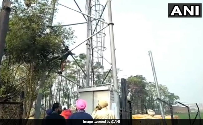 High Court Notice To Punjab, Centre On Vandalism Of Reliance Jio Towers