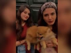 रवीना टंडन ने यश मुखाटे और शहनाज गिल के 'साडा कुत्ता कुत्ता' पर बनाया फनी Video, मां-बेटी की जमी जोड़ी
