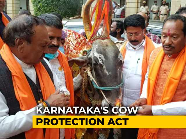 "Video : ""This Is Not Democracy"": Karnataka's Cow Slaughter Bill Provokes Fury"