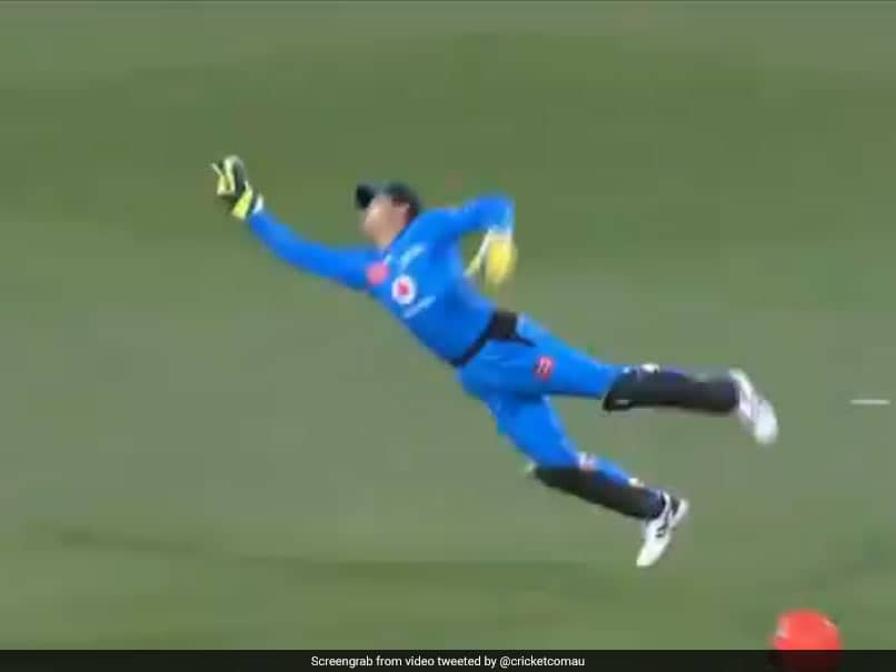 Watch: Adelaide Strikers Skipper Alex Carey Throws Himself In The Air To Pull Off A Stunning Catch In BBL 2020