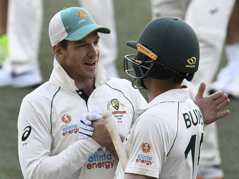 Aus Vs Ind 1st Test Was Expecting A Real Dogfight Says Tim Paine Cricket News