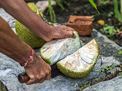 Jackfruit Flour For Diabetes: This Indian Food Gets Recognition From The American Diabetes Association