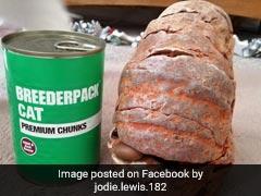 Mistaken For Fossil, Grenade Explodes Inside Home