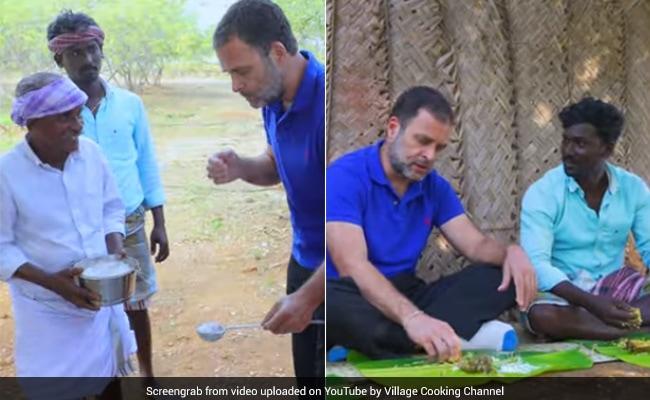 राहुल गांधी ने यूट्यूब फूड चैनल 'विलेज कुकिंग' टीम को किया ज्वाइन, उठाया मशरूम बिरयानी का आनंद- देखें Video