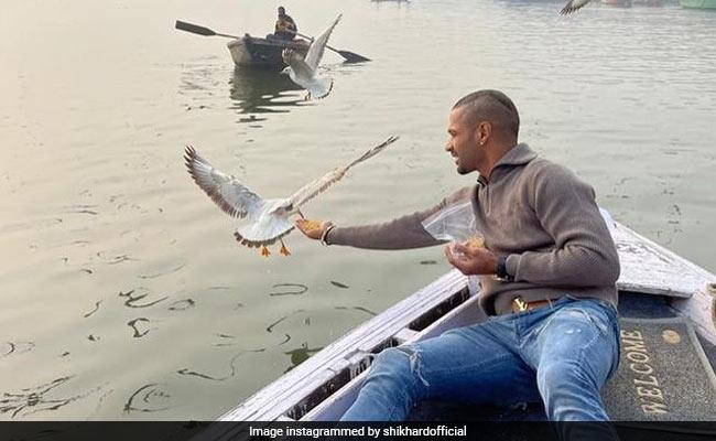 Shikhar Dhawan Feeds Birds On Varanasi Boat Ride, Boatman May Face Action