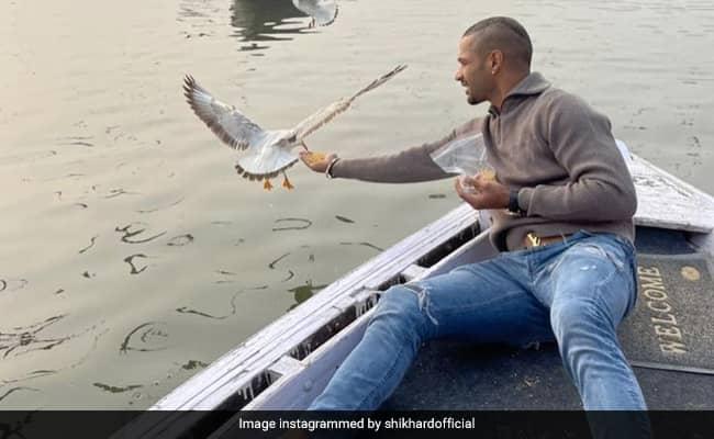 Shikhar Dhawan shared this video while feeding Birds Watch VIDEO