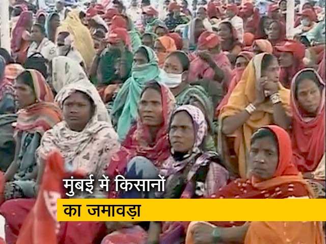 Video: मुंबई में किसानों का शक्ति प्रदर्शन, 21 जिलों से पहुंचे अन्नदाता