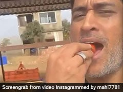 """MS Dhoni Savours Strawberries From Farm, Says """"There Won't Be Any Left For Market"""". Watch"""