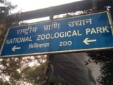 Video : First Case Of Bird Flu Detected In Delhi Zoo