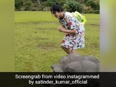 Adah Sharma ने पार्क में कछुए संग लगाई रेस, खूब वायरल हो रहा 'कमांडो गर्ल' का Video