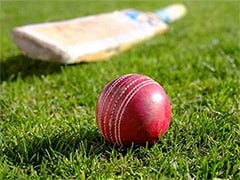 UAE Cricketers Mohammed Naveed, Shaiman Anwar Found Guilty Of Match-Fixing Offences: ICC