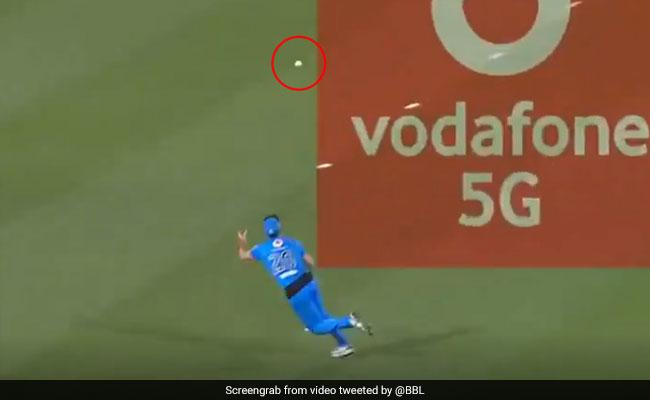 BBL 2020: खिलाड़ी ने हवा में उड़कर एक हाथ से लिया धमाकेदार कैच, देखता रह गया बल्लेबाज - देखें Video