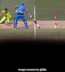 Watch: Batsman 'Run Out At Both Ends' In Bizarre Dismissal In BBL