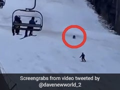 Video: Skier Gets Chased Down Mountain By A Bear As People Watch In Horror