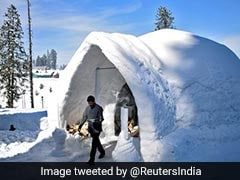 India's First Igloo Cafe Opens In Kashmir And Twitter Is Loving It
