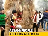 Video : Assam Celebrates Bhogali Bihu Today