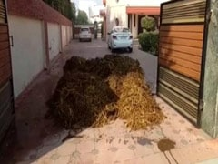 पंजाब: बीजेपी के पूर्व मंत्री के घर पर किसान प्रदर्शनकारियों ने फेंका गोबर, कैप्टन ने चेताया
