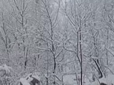 Video : Heavy Snowfall Disrupts Normal Life In Kashmir Valley