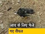 Video : राजस्थान: झालावाड़ में 250 कौवों की मौत, बर्ड फ्लू की हुई पुष्टि
