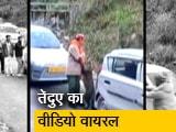 Video : सड़क पर घूमता दिखा तेंदुआ, लोग बनाने लगे वीडियो