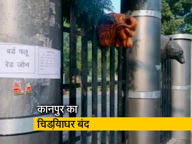 Videos : बर्ड फ्लू की दहशत: अगले आदेश तक कानपुर का चिड़ियाघर बंद