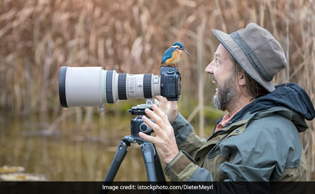 World Photography Day 2021: Celebrate The Day By Entering These Contests