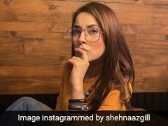 Shehnaaz Gill ने इस अंदाज में कराया फोटोशूट, देखें पंजाब की कैटरीना कैफ की एक से एक Photo