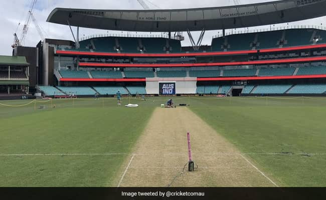 Ind vs Aus 3rd Test Pitch Report in Sydney, know what the curator said