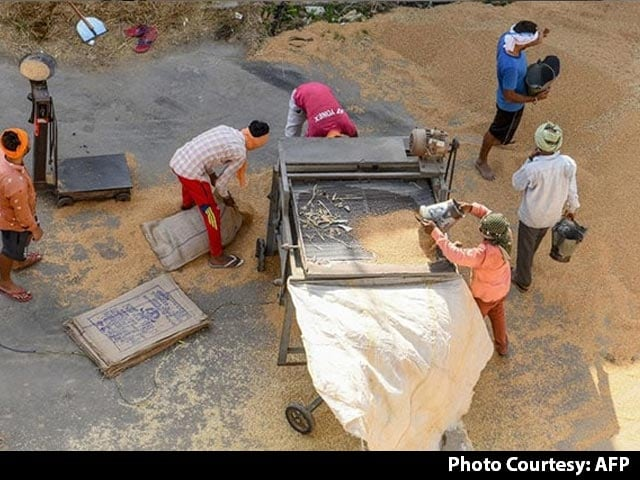 Video : CBI Raids 40 Godowns In Punjab, Samples Of Rice And Wheat Stocks Seized