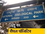 Video : दिल्ली के चिड़ियाघर में बर्ड फ्लू का पहला मामला, सैनिटाइजेशन का काम जारी