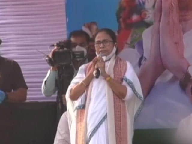 "Video : ""As If Tagore Is Here"": Mamata Banerjee Mocks PM's Long, White Beard"