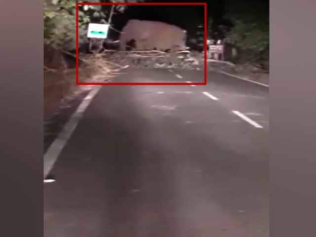 Video : Watch: Elephant Disrupts Traffic Movement On Highway In Odisha