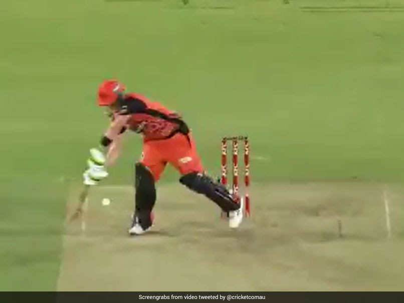 """Watch: Josh Inglis Produces """"The Most Outrageous Shot Of BBL 10"""" For Perth Scorchers In Playoff Match"""