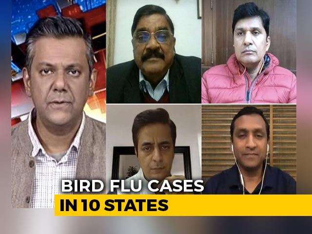 Video : Is India Prepared To Deal With Bird Flu?