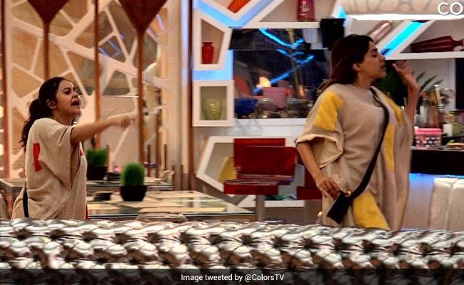 Bigg Boss 14 Written Update January 20, 2021: Devoleena Bhattacharjee Targets Nikki Tamboli