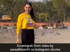 Sara Ali Khan ने की कबूतरों को दाना खिलाने की कोशिश, चिल्लाकर बोलीं 'आओ' तो हुई ये गड़बड़- देखें Video