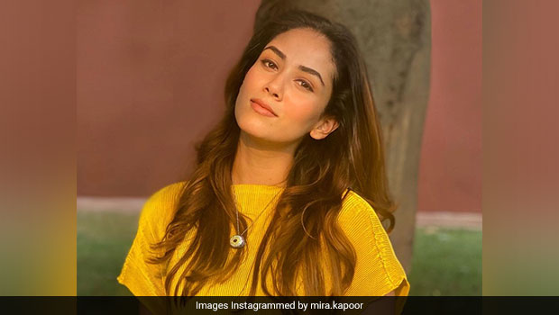 Mira Kapoor Organised A High-Tea Party For Kids; Here's What It Looked Like