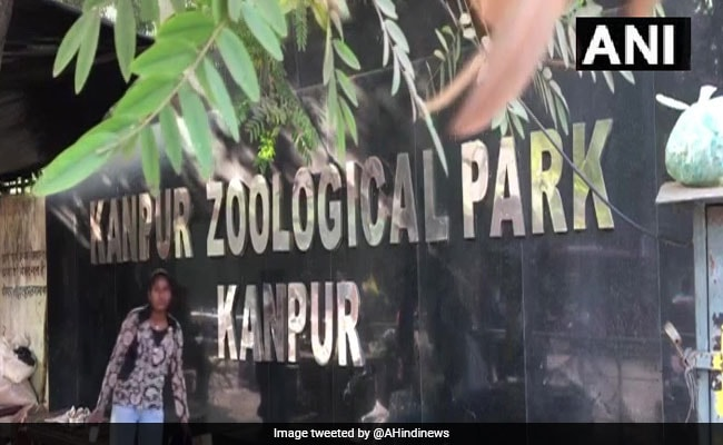 Kanpur Zoo Closed Until Further Orders In View Of Bird Flu Outbreak
