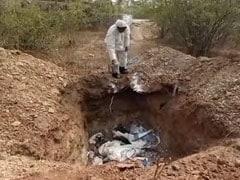 राजस्थान में बर्ड फ्लू की दस्तक; अब तक 250 से ज्यादा कौवों की मौत, अलर्ट जारी