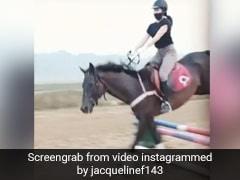 जैकलीन फर्नांडीस ने नए साल पर की घुड़सवारी, हर्डल के आते ही यूं लगा दी छलांग- खूब Viral हो रहा है Video