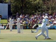 NZ Vs Pak: शाहीन अफरीदी ने चालाकी से किया बल्लेबाज को आउट, अंपायर ने दे दी No Ball - देखें Video