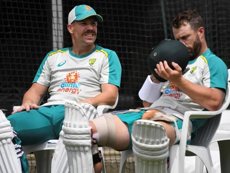 Australia vs India: Players Like David Warner Are Hard To Come By, Says Matthew Wade